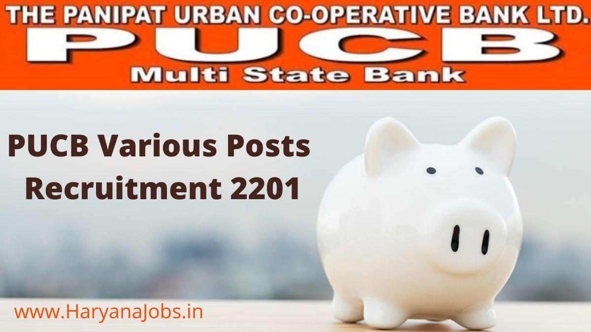 Panipat PUCB Bank Recruitment 2021