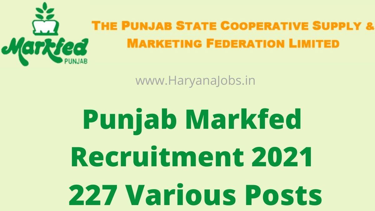 Punjab Markfed Recruitment 2021