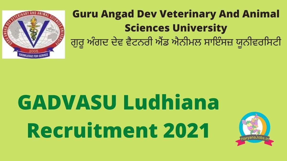 GADVASU Ludhiana Recruitment 2021